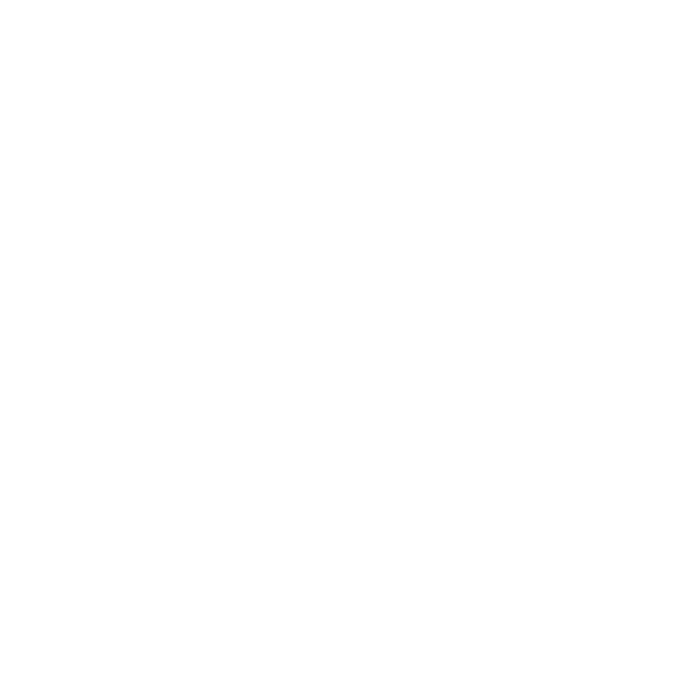 BOE Family Flights